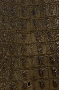 GATOR GOLD EMBOSSED LEATHER SAMPLE